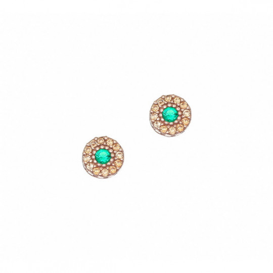 Earrings With Criconite And Colour