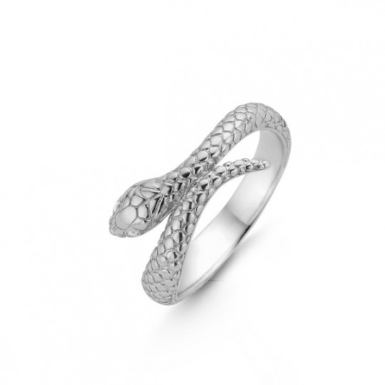 Silver Snake Ring With A Silver Loop